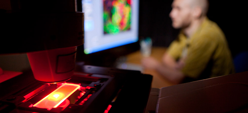 Researcher conducting microscopy through a computer.